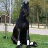 Що люблять коні?