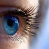 Що таке зір?