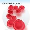 Кольоровий показник крові: норма, формула розрахунку