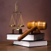 Юридична відповідальність: види, функції, підстави
