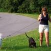 Як гуляти з собакою?