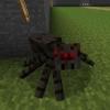 Як маринувати павуковий очей?