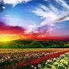 Як виглядає рай? Уявлення про рай в різних релігіях