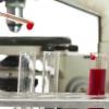Яка норма лейкоцитів?