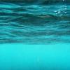 Яка щільність води?