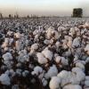 Сонячний узбекистан: міста, список