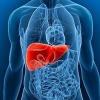 Тимолова проба та її значення в діагностиці патології печінки